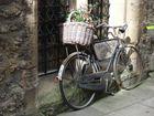 Wem wohl dieses Fahrrad gehört?