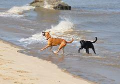 Wen interessieren schon die Wellen...;-)
