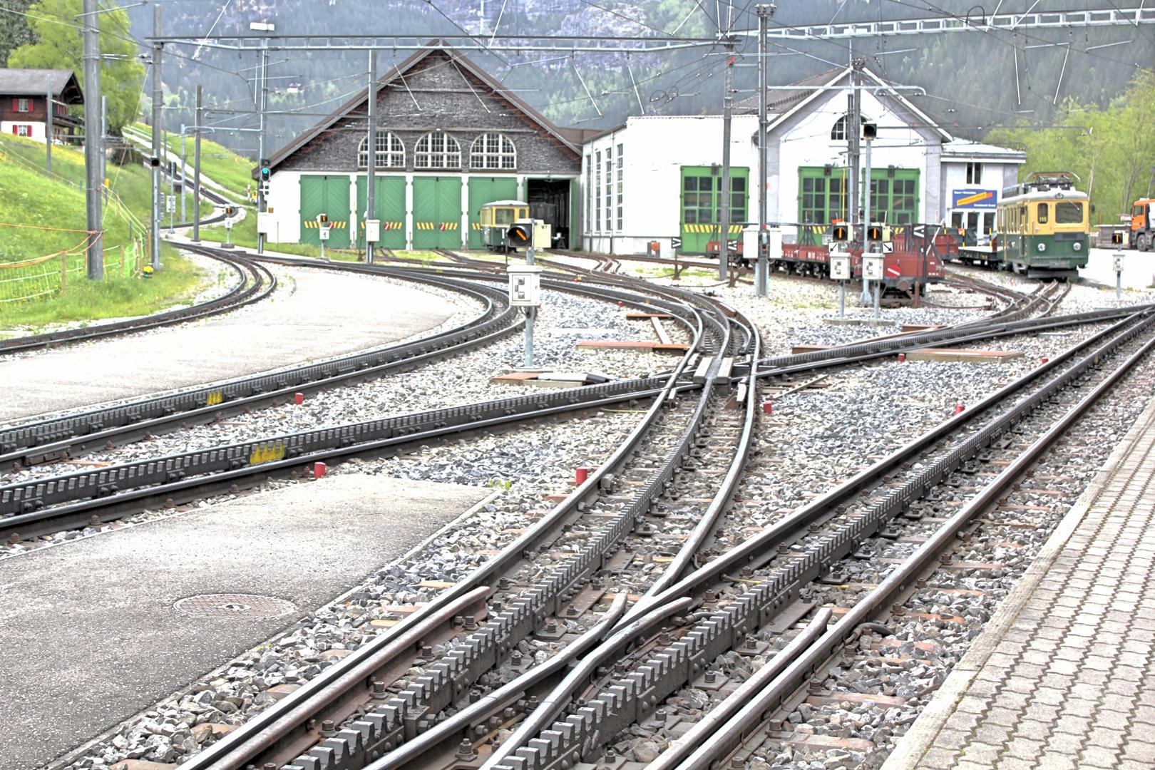 Wengernalpbahn in Grindelwald