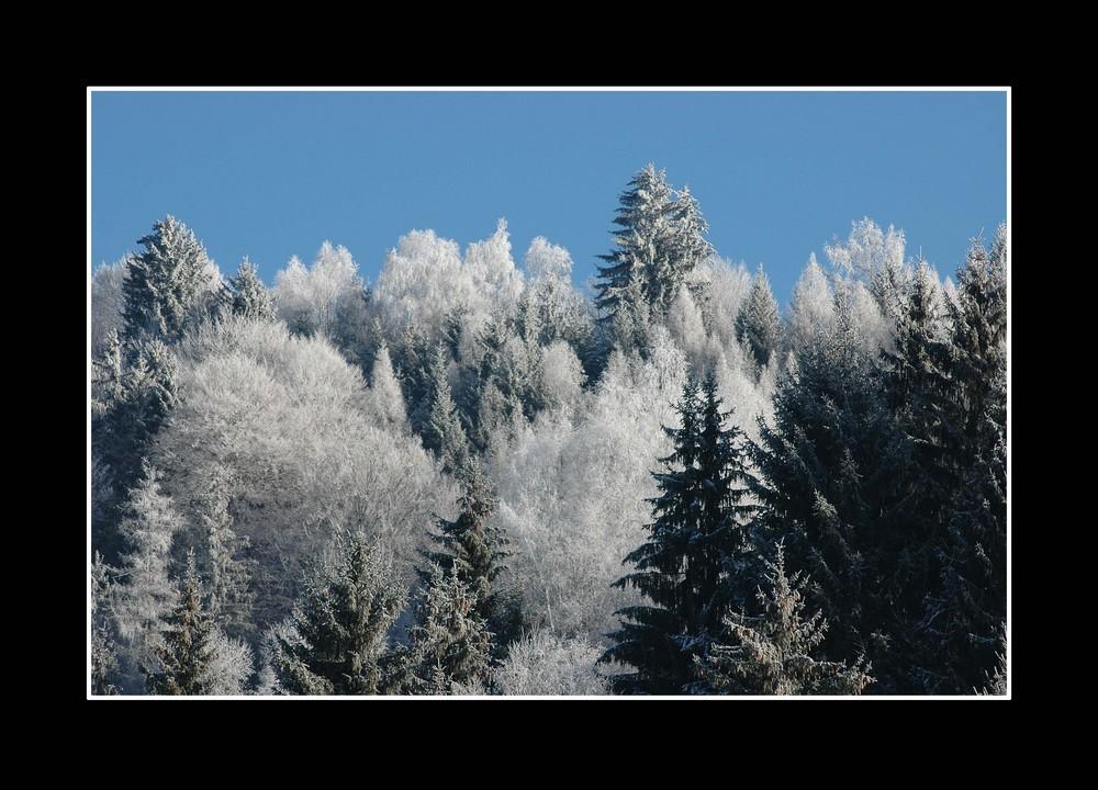 Wenig Schnee, dafür aber Kälte