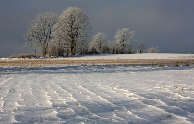 Wenig-Schnee-Winter