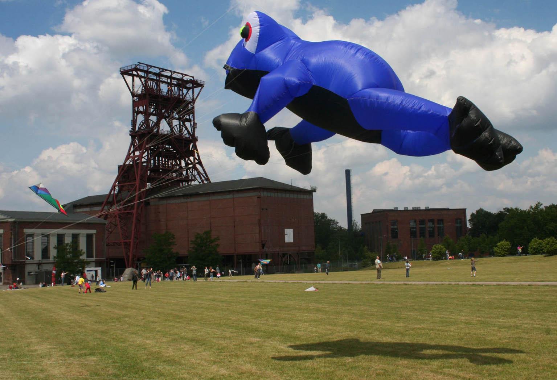 Wenn blaue Frösche fliegen...