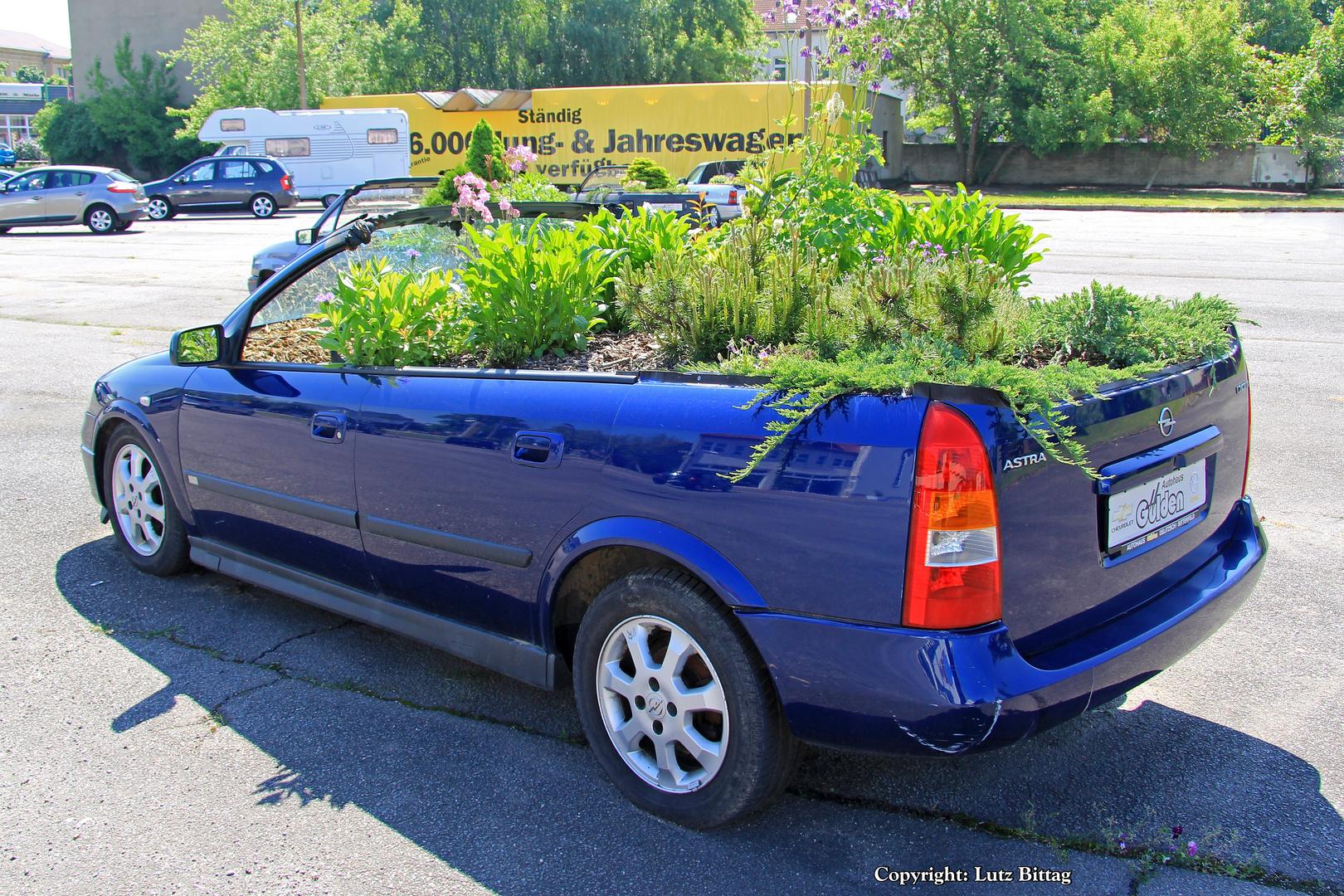 Wenn das Cabrio zu lange offen parkt ...