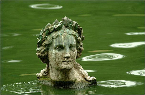 Wenn das Wasser bis zum Halse steht ...