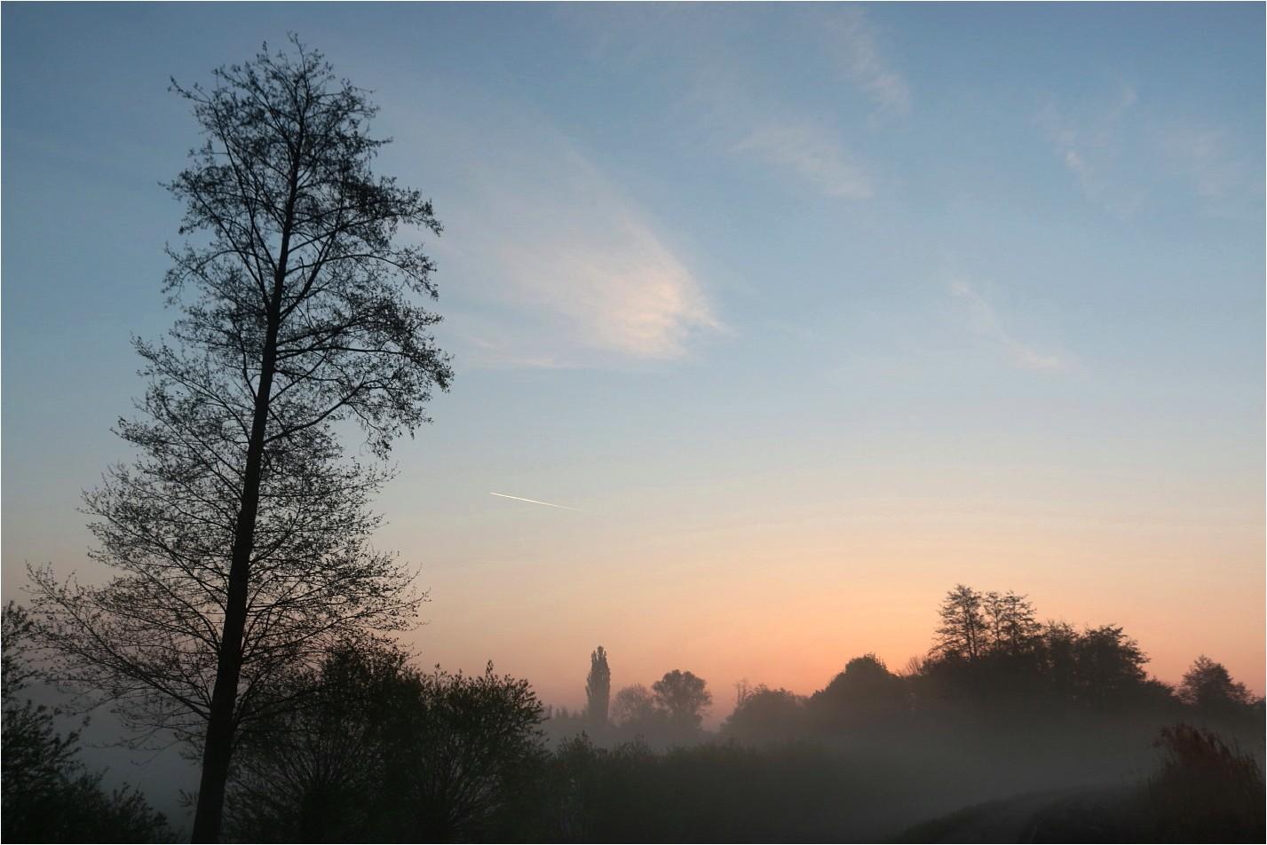 Wenn der Nebel kommt