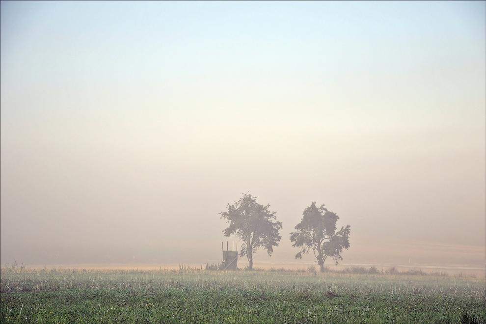 wenn der Nebel sich davon schleicht...