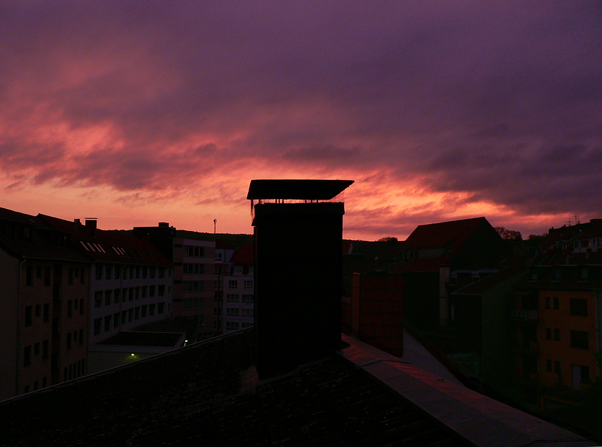 Wenn der Pfingstmorgen violettet