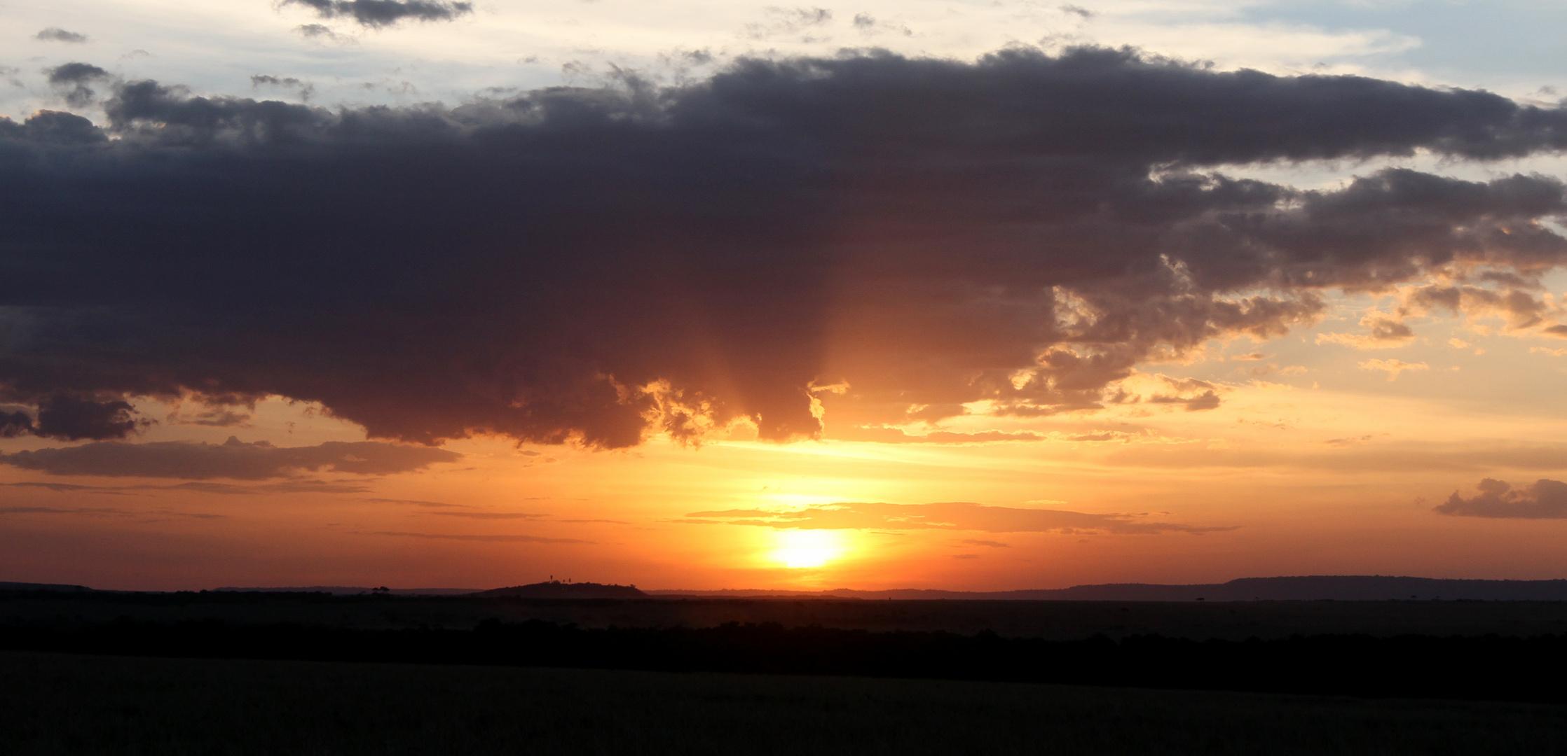 wenn der Tag in Masai Mara sein Abendlicht zeigt und dazu ein schönes Lied erklingt