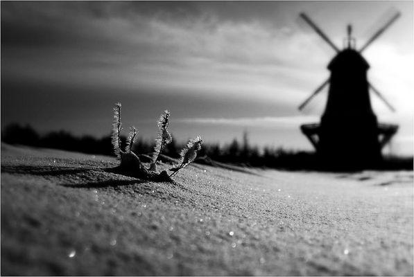 Wenn Der Winter Still Sein Märchen Erzählt