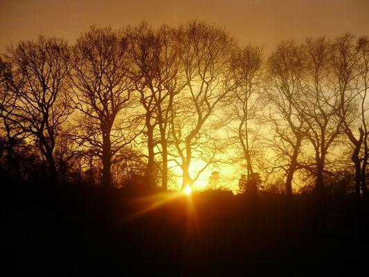 Wenn die Sonne ihr Licht zeigt.