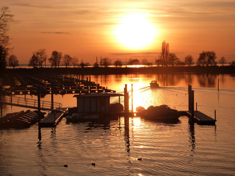 Wenn die Sonne im See versinkt ....