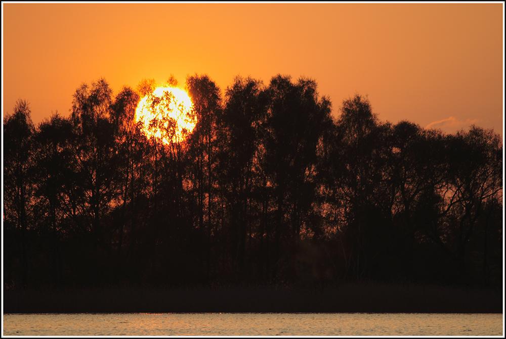 Wenn die Sonne zu tief sinkt, brennt der Wald....