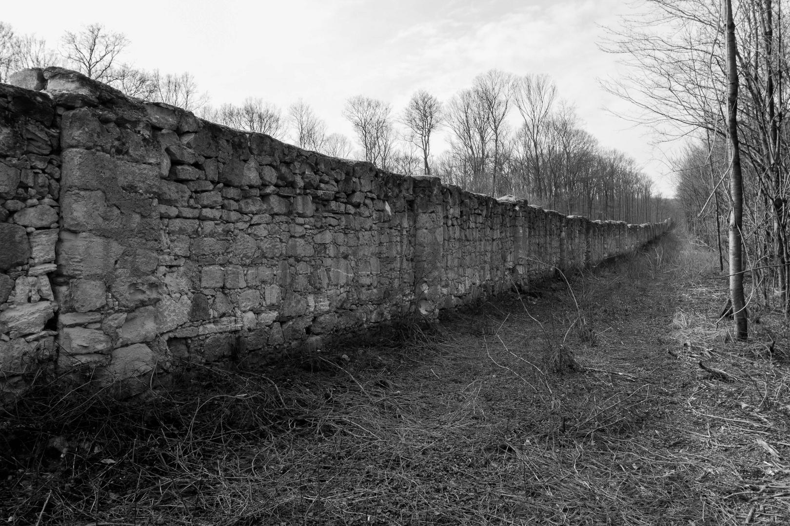 Wenn diese Mauer sprechen könnte