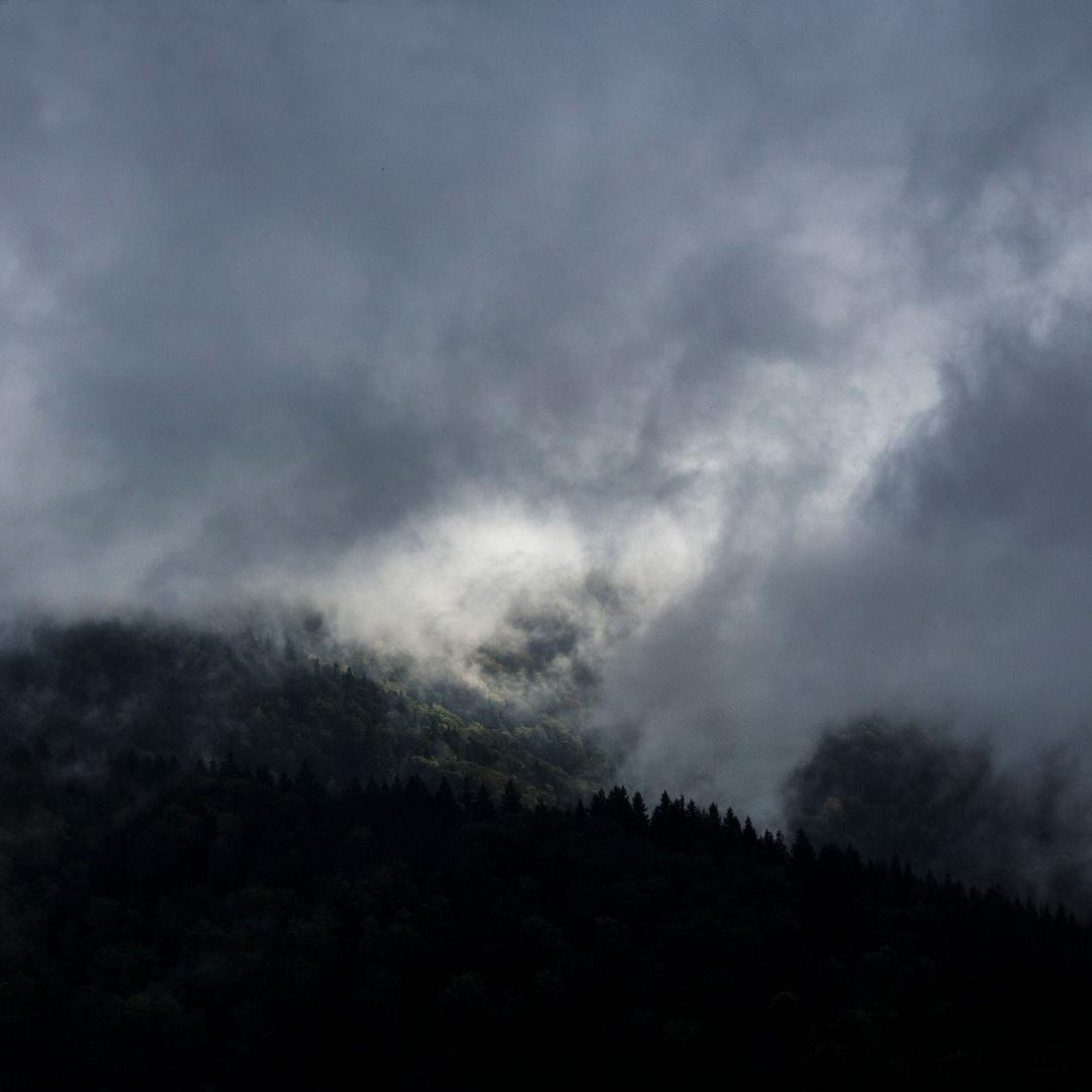Wenn graue Nebel wallen.