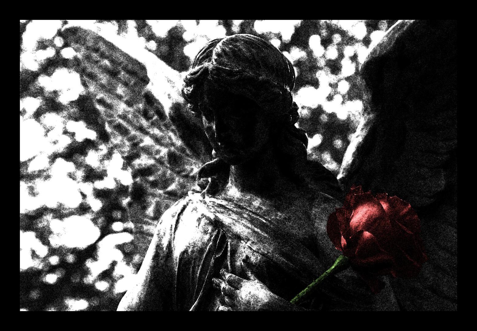 Wenn ich dir die Rosen zeige, wirst du mir folgen? oder Alles vergeht!
