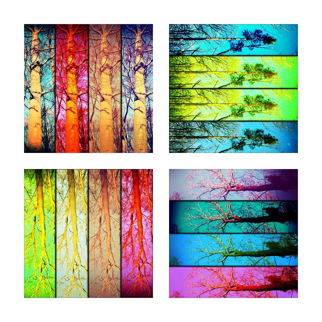 Wenn ich mich nicht entscheiden kann ... dann bastel ich halt ne Collage :)