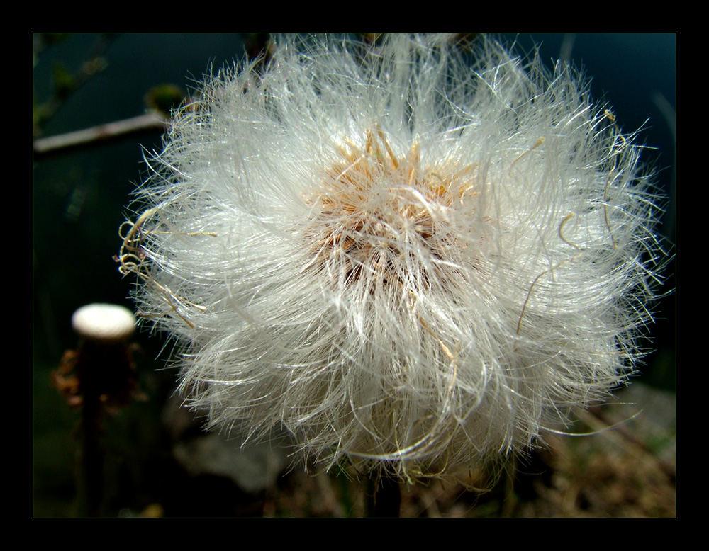 Wenn jetzt noch Wind wäre... (3)