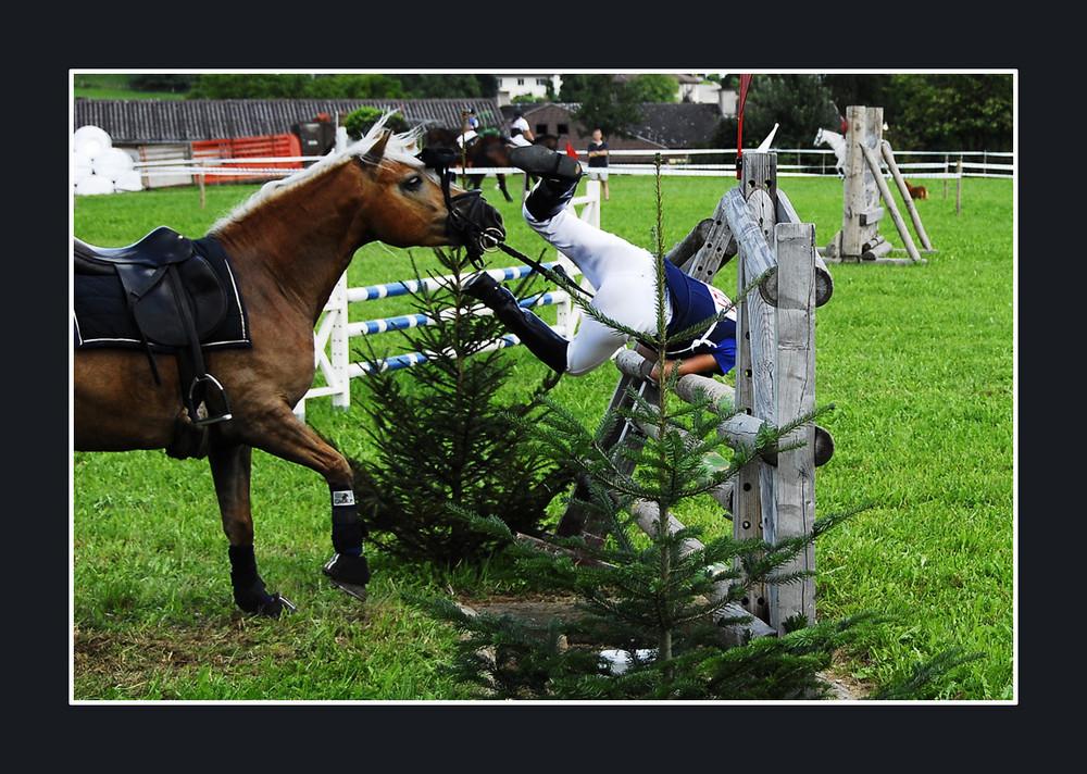 Wenn Pferd und Reiter nicht das selbe Ziel haben.....