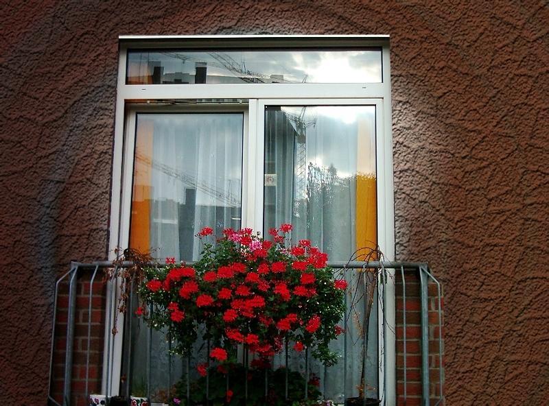 Wenn saubere Fenster den Einblick verwehren.....