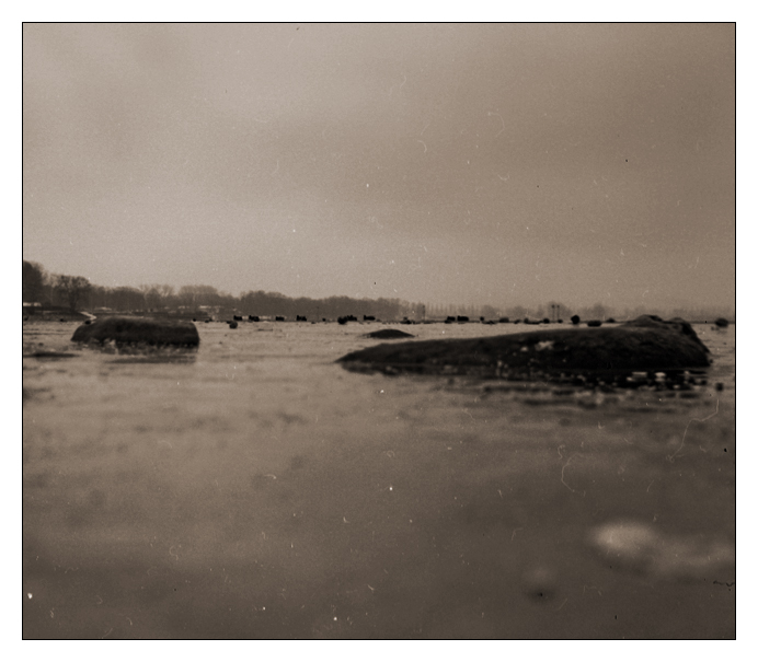 - _wenn Steine auf dem Wasser schwimmen -