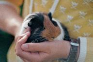 Wenn Tiere Menschen verstehen und Menschen Tiere verstehen bedeutet das oft das Schönste...
