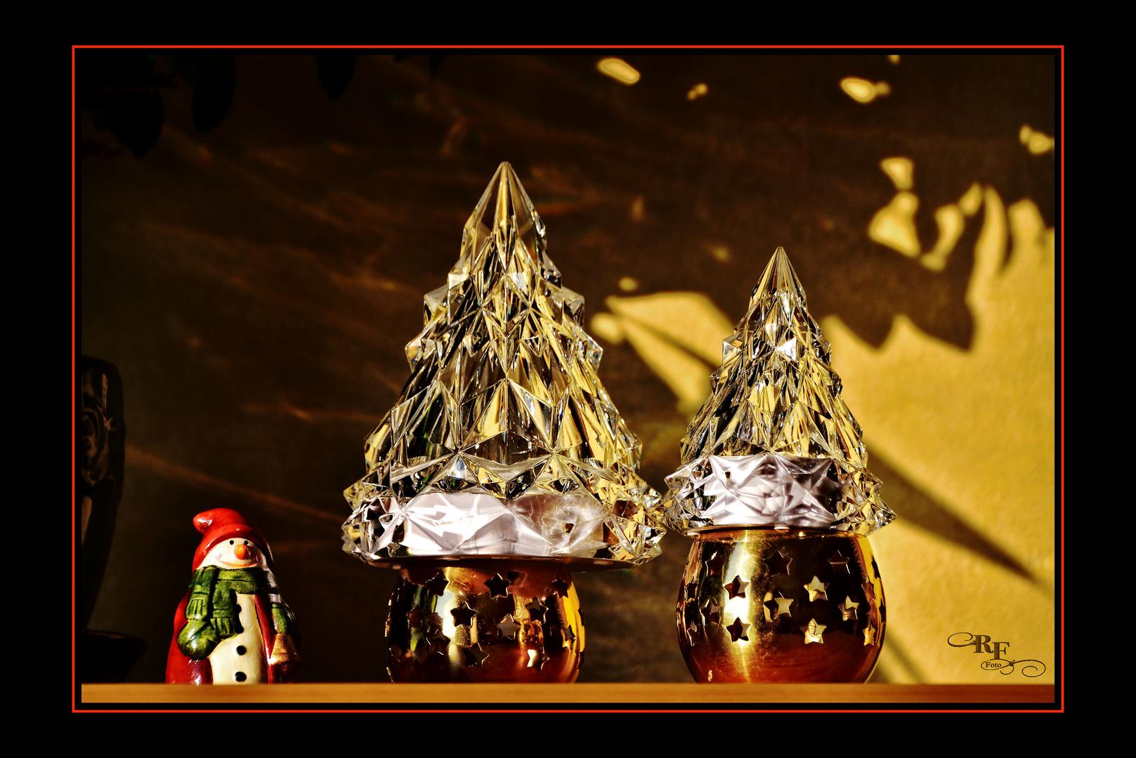 Wenn Weihnachtsbäume das Licht sammeln ...
