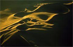wenn Wüsten leuchten