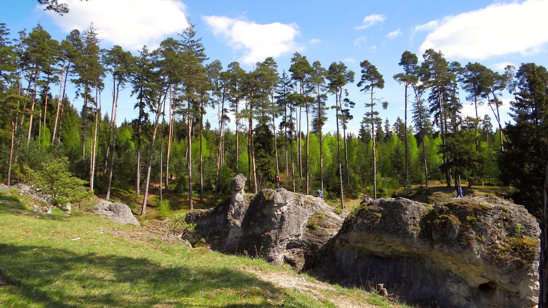 Wental-Panorama