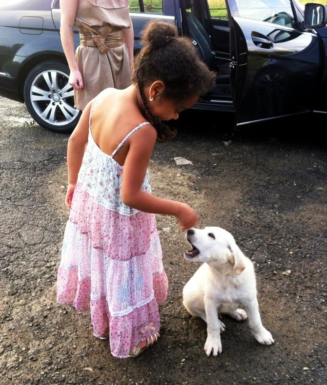 """Wer bist du denn da? Bist du ein """"Tatrahund""""?"""