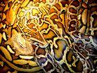 Wer findet alle fünf Tiere in der Schlangensuppe (2.0)?