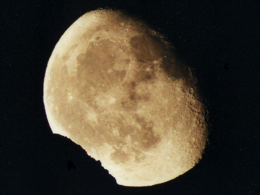 Wer hat vom Mond abgebissen ?