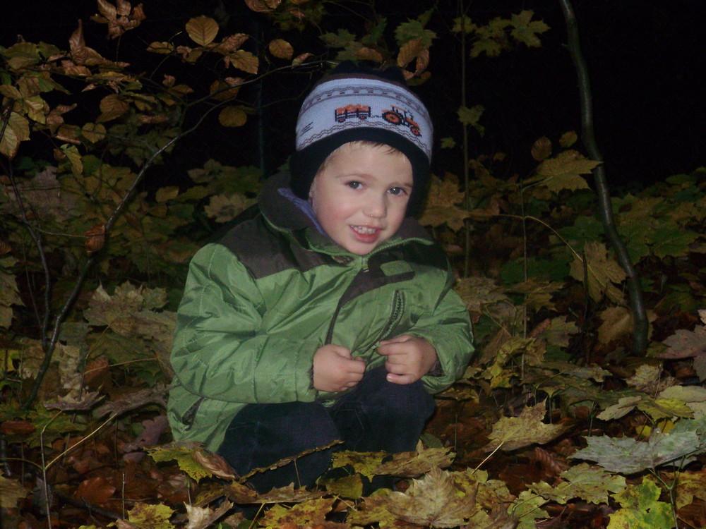 Wer hockt denn da im Blätterwald?