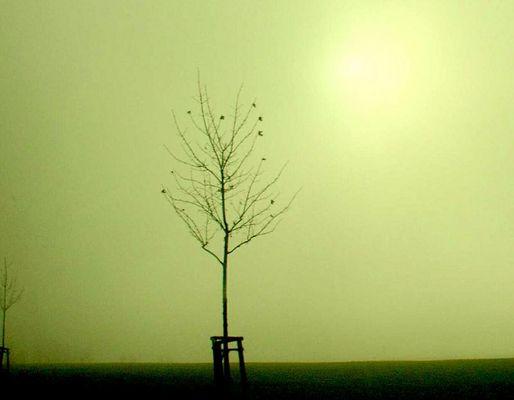 ...wer jetzt allein ist, wird es lange bleiben...