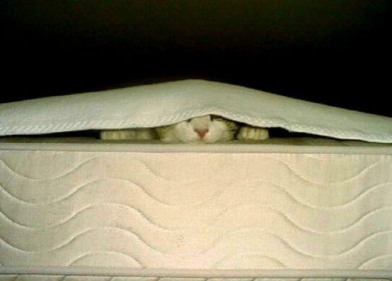 Wer mich nicht sieht.....