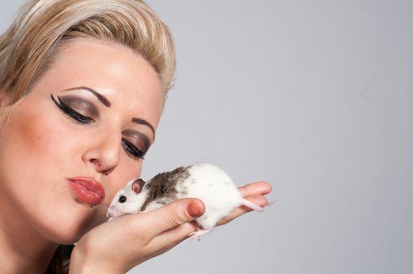 Wer möchte da keine Maus sein?