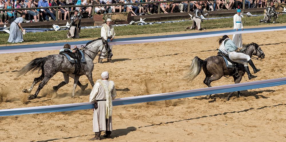 Wer reitet so komisch durch Sand und Staub.....