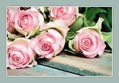 Wer Rosen mag