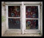 Wer schaut denn da zum Fenster raus?