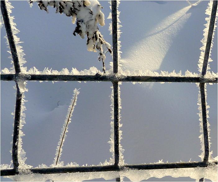 Wer will noch Schnee ?