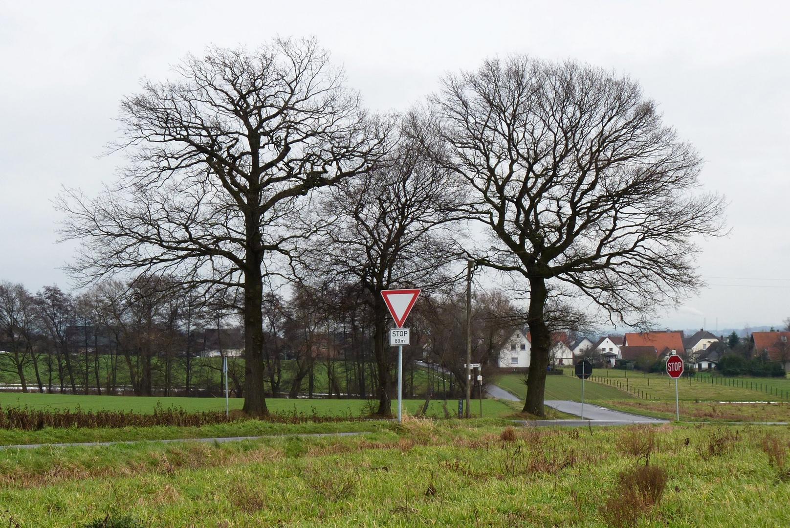 Werster Heide