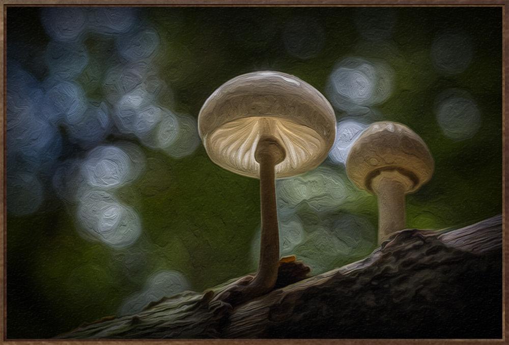 wertvolles Ölgemälde für die Wand mit Pilzen!