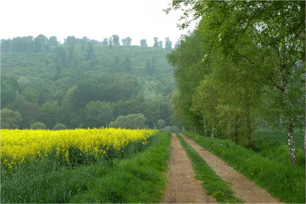 Weserradweg...