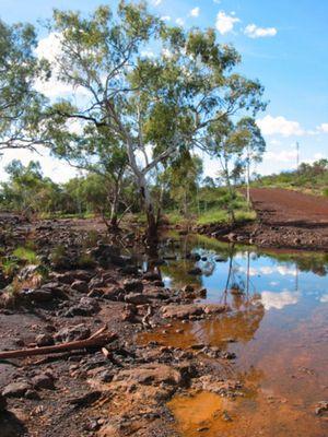 Westaustralien nach der Regenzeit im April