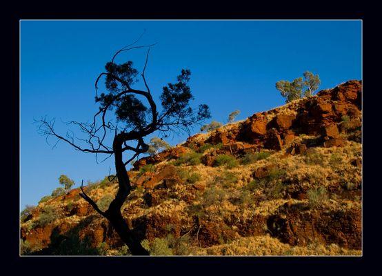 Western Australia - Karijini National Park - III