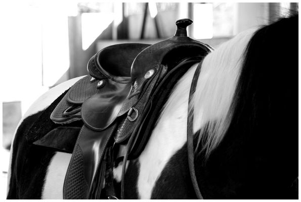 Western Saddle (reloaded)