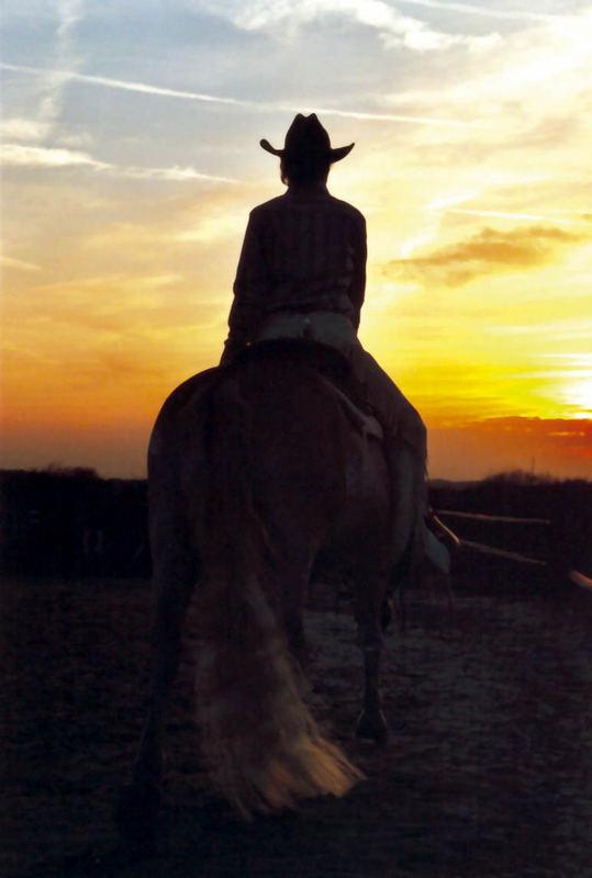 Westernriding,Cowboyfeeling