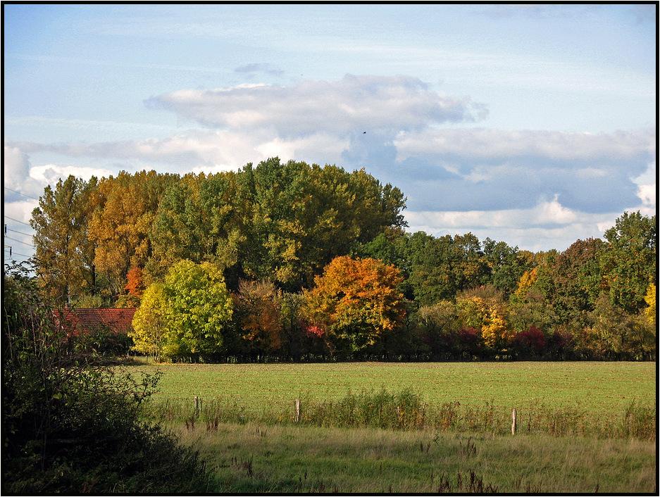 westfälische Parklandschaft