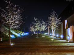 Westpark Bochum - die Treppe