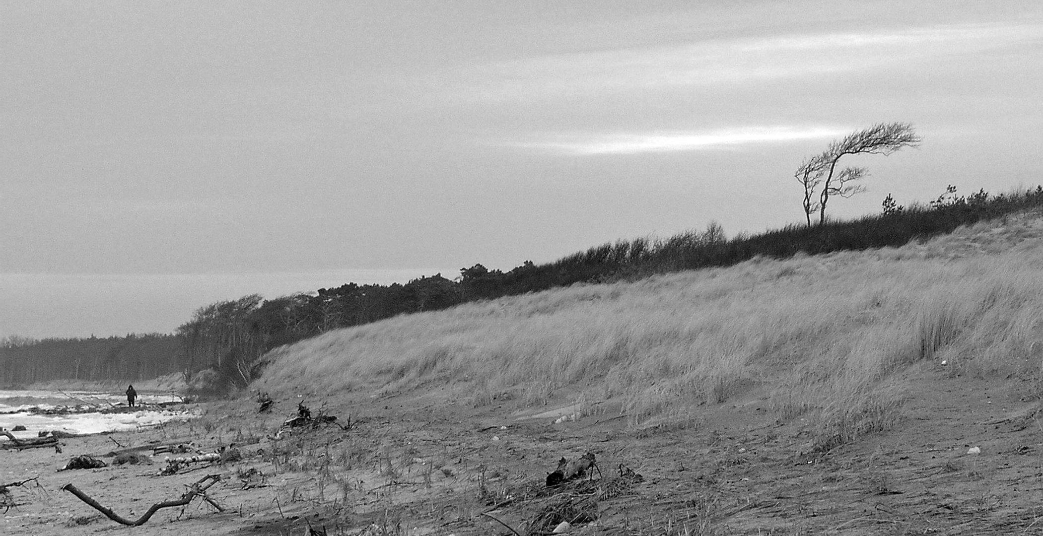 Weststrand 10.Januar 2012 (2)