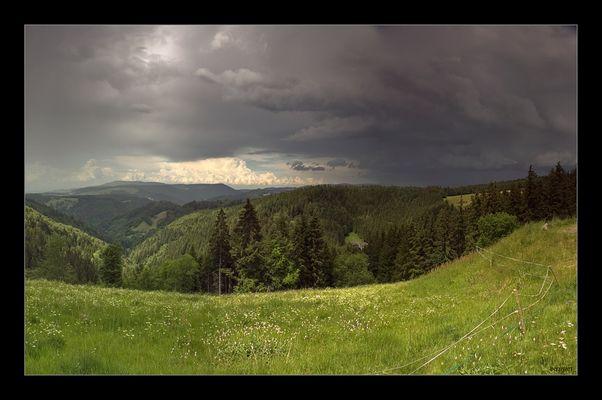 Wetterbericht aus dem Schwarzwald